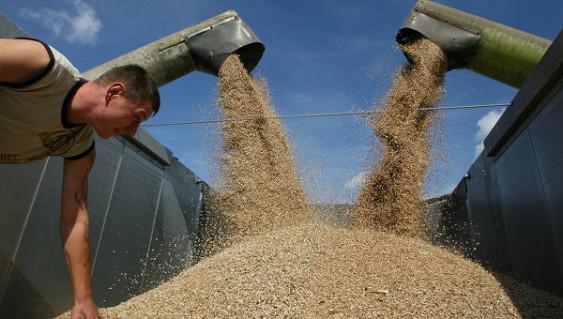 Регионам дадут еще 2,2 миллиарда рублей на развитие агропрома